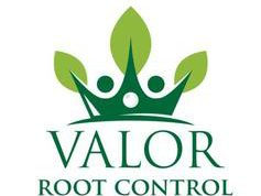 Valor Root Control